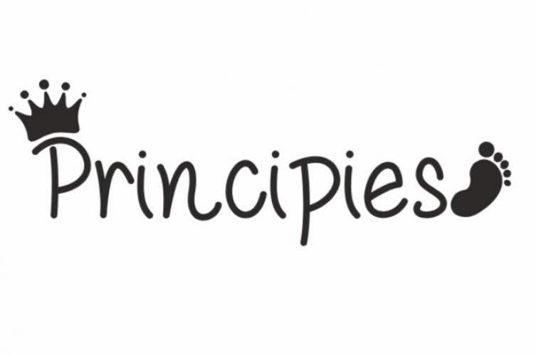 PRINCIPIES